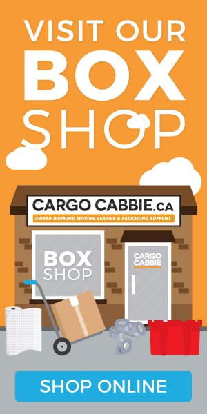 cargo-cabbie-final-boxshop-300x600-2