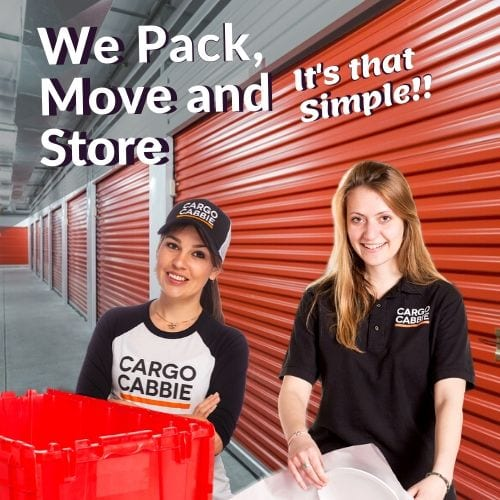 pack move store
